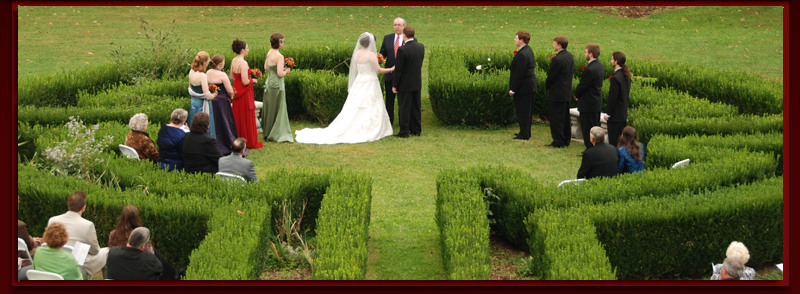 Bridal party in boxwood garden
